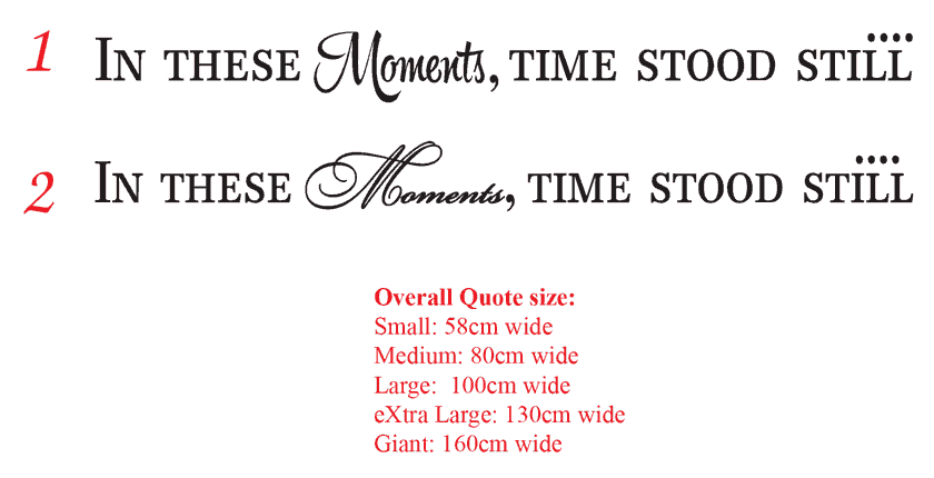 In these moments, time stood still...gallery decal sticker
